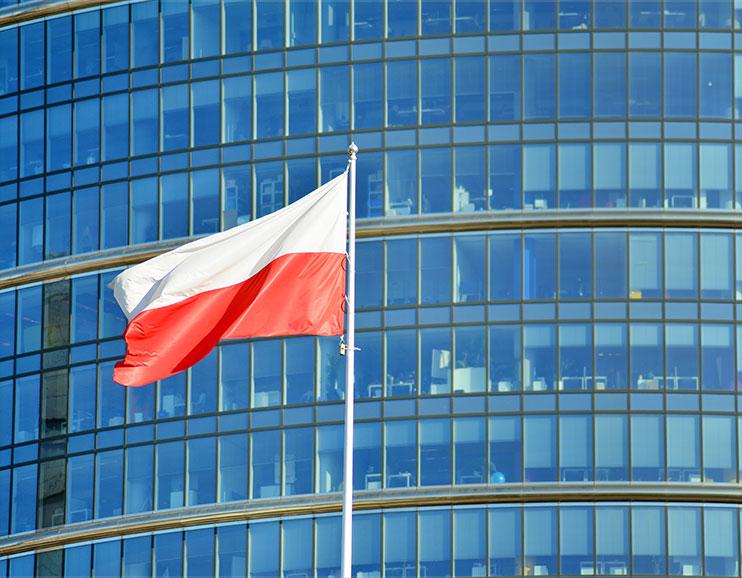 Polish Businesses image
